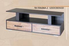 плазма-2